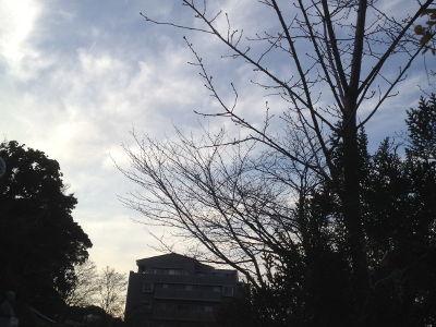 20131215_ip1.jpg