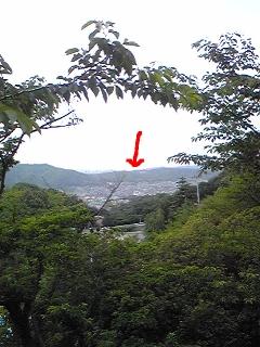 Image585.jpg