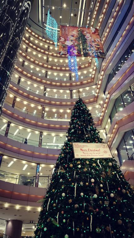 ims_xmas_tree20191211.jpg